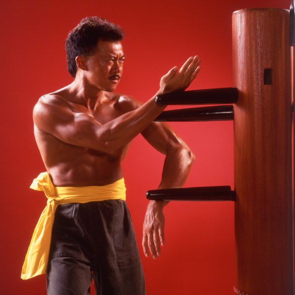 Stephen Chan's Wing Chun Kung Fu Assoication